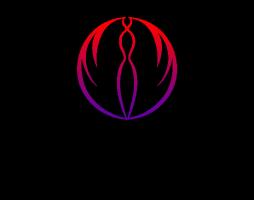 孝感天妃整形-logo