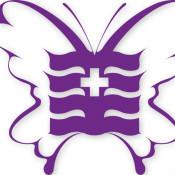 怀化德美整形-logo